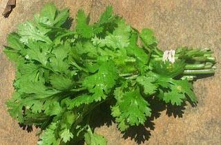 فوائد ماء عصير منقوع مغلي البقدونس الصحية للجسم ومضاره على الحامل parsley benefits