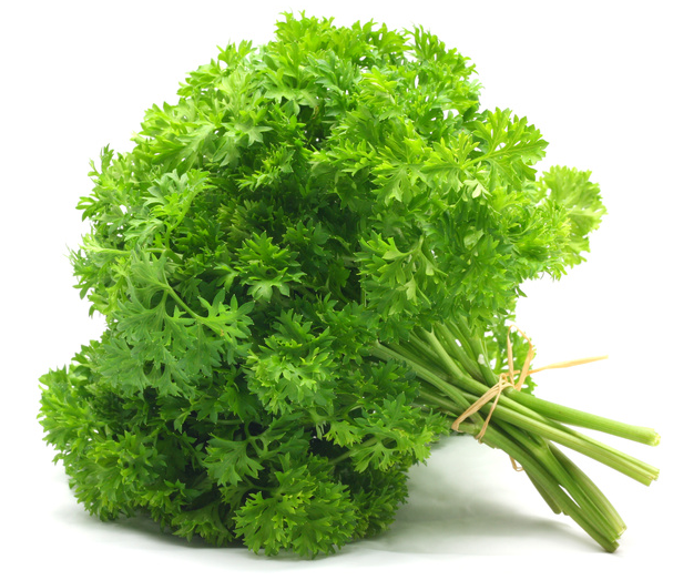 Hridya or Cancer Rog mein Parsley ka Prayog