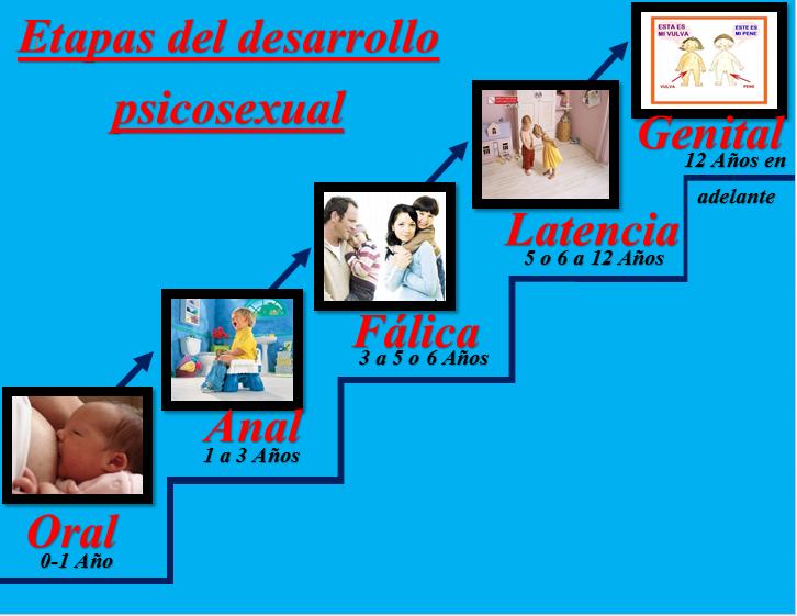 Aprendizaje: Desarrollo psicosexual y psicosocial del ser humano