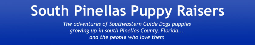 South Pinellas Puppy Raisers