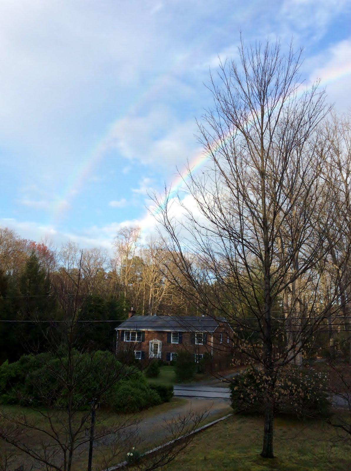 Rainbow - 3.2017