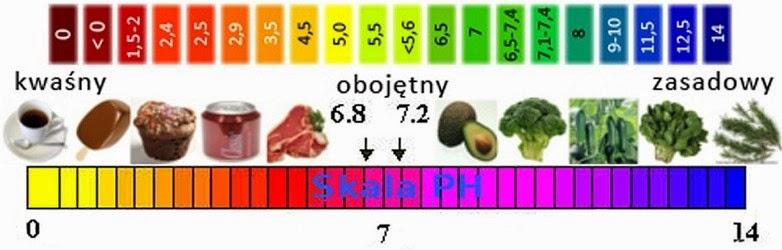 Równowaga kwasowo-zasadowa