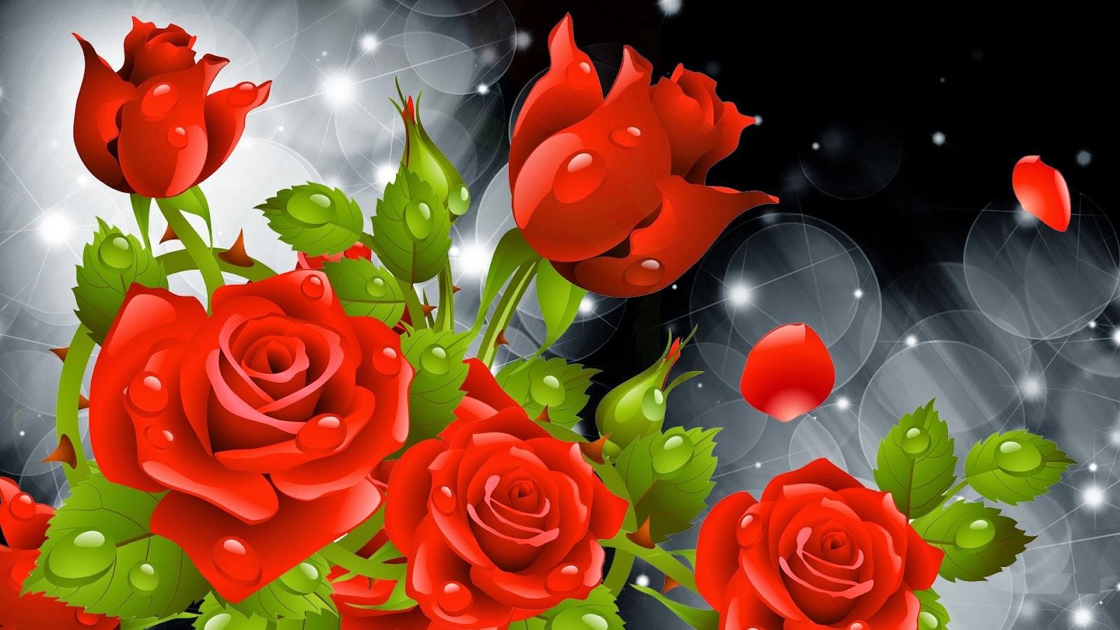 rose hd wallpaper free download