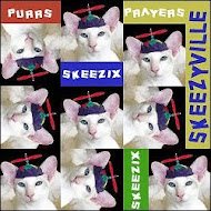 Purrs and Purrayers for Skeezix