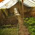 Walipini, ventajas de los invernaderos subterráneos
