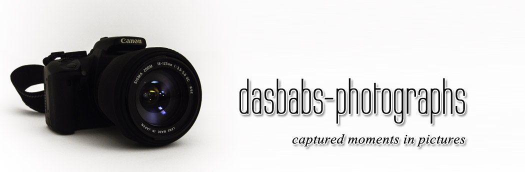 dasBabs-photographs: captured moments in pictures