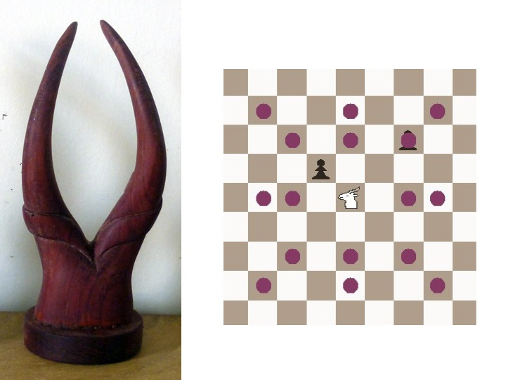 how to play fairy chess
