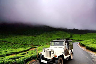 Kerala (Best Honeymoon Destinations In India) 9