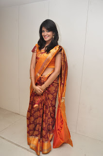 Model krupali in silk saree at cmr ashadam event 007.jpg