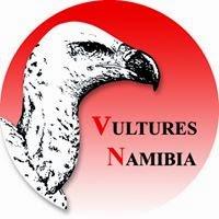 BUITRES EN NAMIBIA