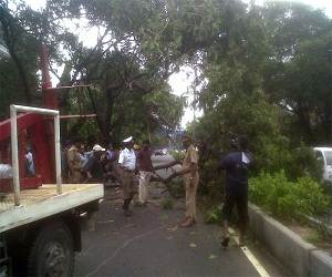 Cyclone_Nilam_Damage_photo_Chennai