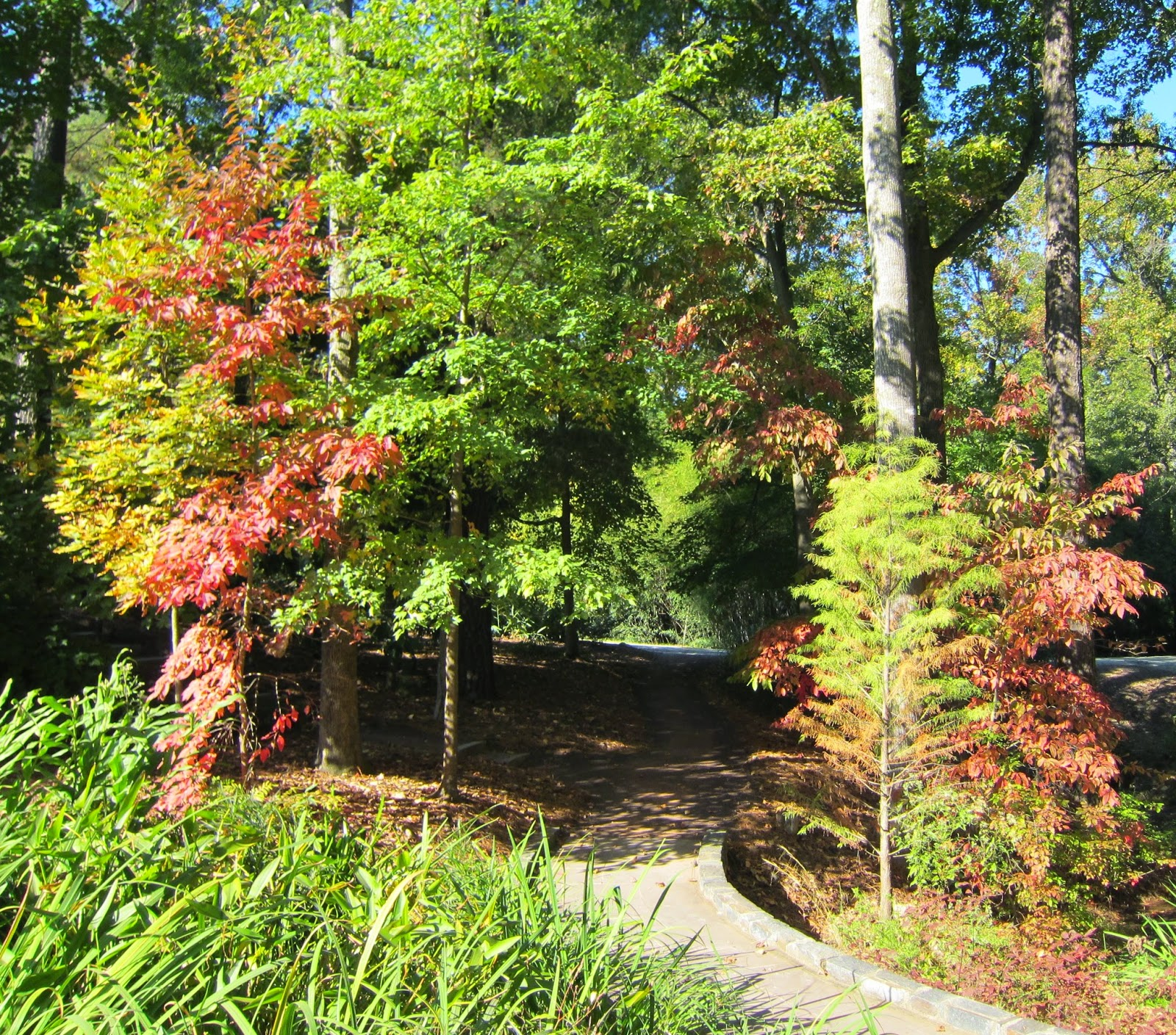 gardens@duke: The Colors of Fall