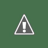 PARÓQUIA S. ROQUE