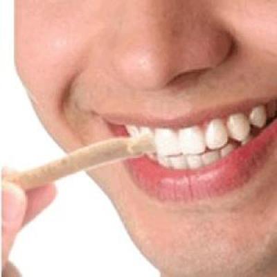 misvakla diş fırçalama