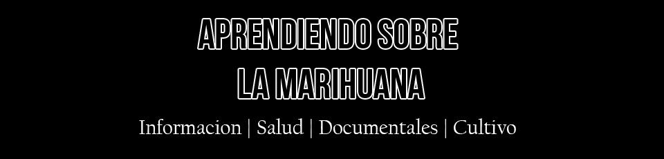 Aprendiendo sobre la marihuana