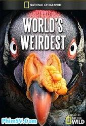 Những Sinh Vật Kì Lạ Nhất Trái Đất - National Geographic Worlds Weirdest