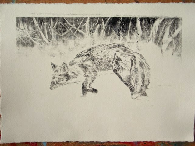 Fox in the snow drypoint print