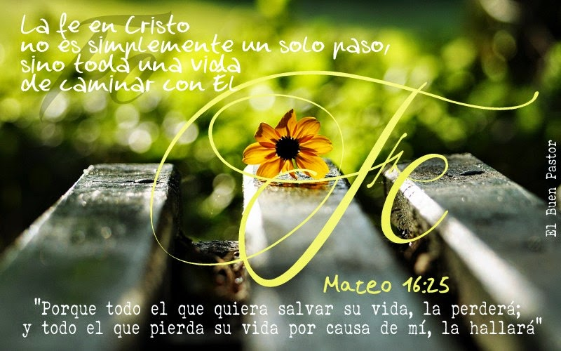 YO SOY EL BUEN PASTOR: Marcos 16:25
