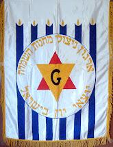 דגל ארגון ניצולי מחנות ההשמדה יוצאי יוון בישראל מתלווה לכל המסעות .