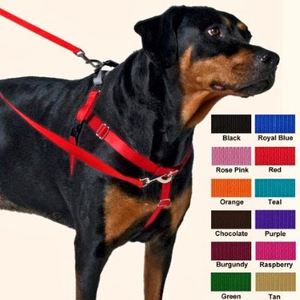 http://www.petco.com/product/102822/PetSafe-Easy-Walk-Black-Dog-Harness.aspx?CoreCat=OnSiteSearch