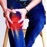 obat tradisional asam urat lutut bengkak manjur
