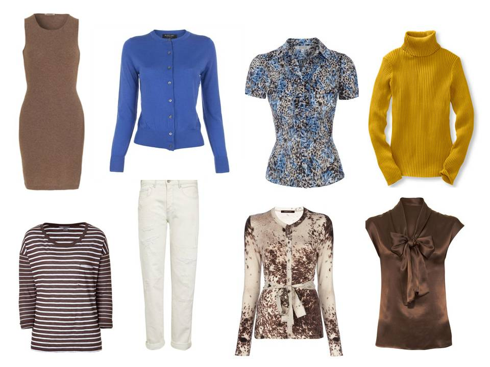 Wardrobe Brown Ivory And Blue The Vivienne Files