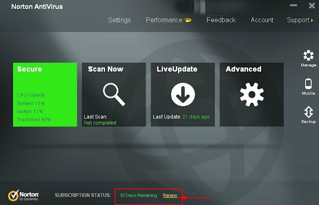 Norton Antivirus 2013 - Interface