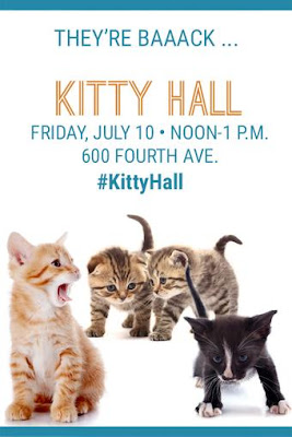 Kitty Hall poster