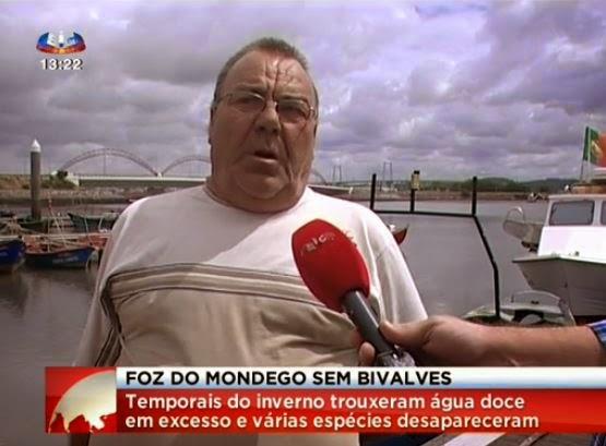 http://noticias.sapo.pt/videos/sic-noticias_5759/53b7f531d4f8acbe5f000310/