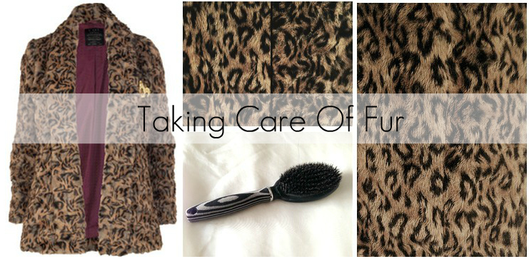 Taking Care Of Fur | The Science of Happy