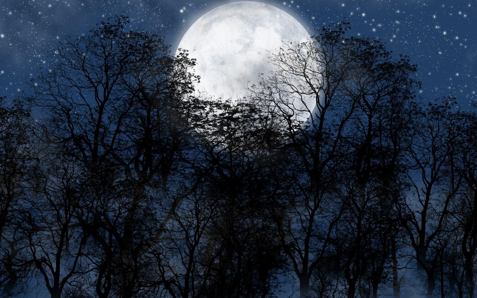 http://1.bp.blogspot.com/-udyzNZoh1_0/T9DGN7ePrpI/AAAAAAAAe0Q/HilPQSE0trk/s1600/Luna-llena-y-Estrellas_Imagenes-de-Fondo-HD.jpg