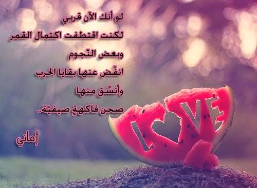 قصيدة وصورة