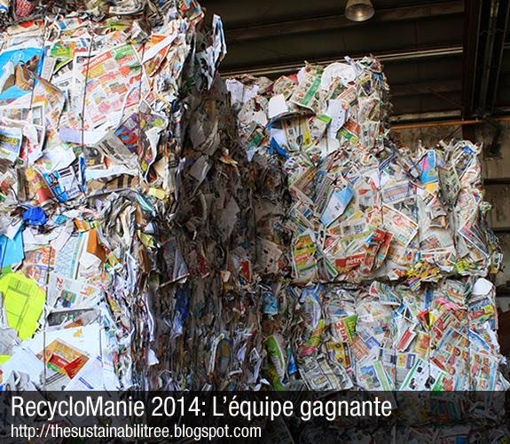 Une montagne de papier recycler