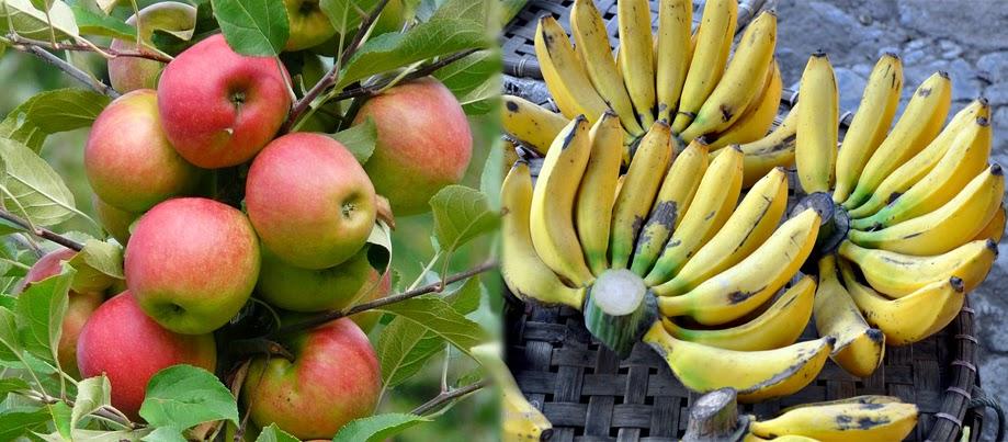 5 Buah-buahan Yang Cocok Untuk Diet