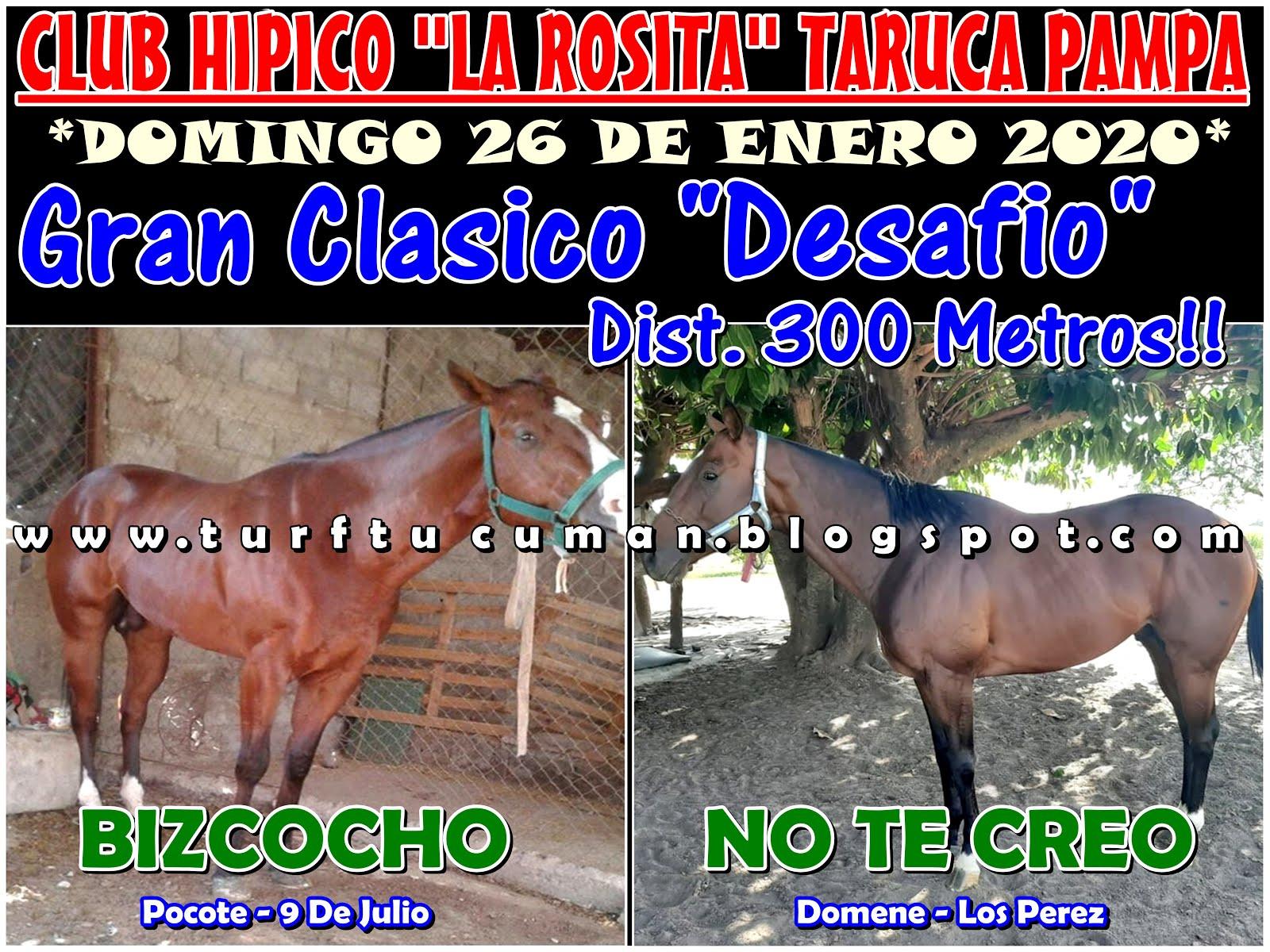BIZCOCHO VS NO TE CREO