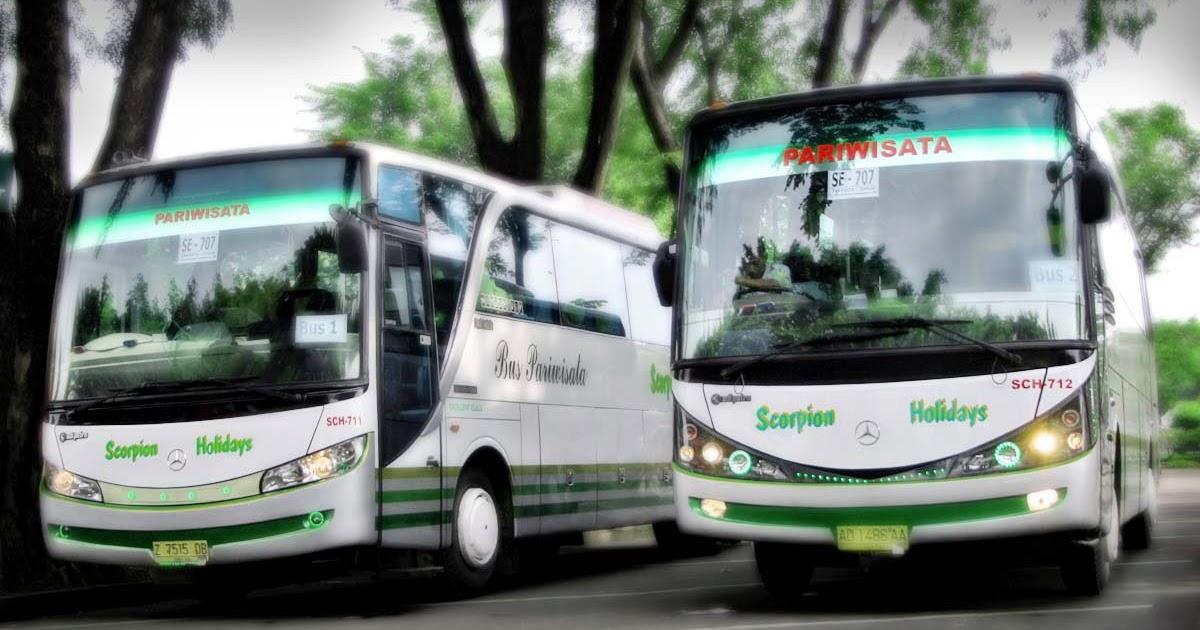 """bus wisata executive terekonomis di bekasi""""scorpion ..."""
