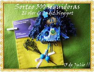 SORTEO 300 SEGUIDORAS