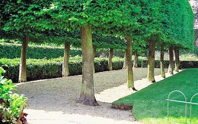 hidcote-Manor-Garden-UK