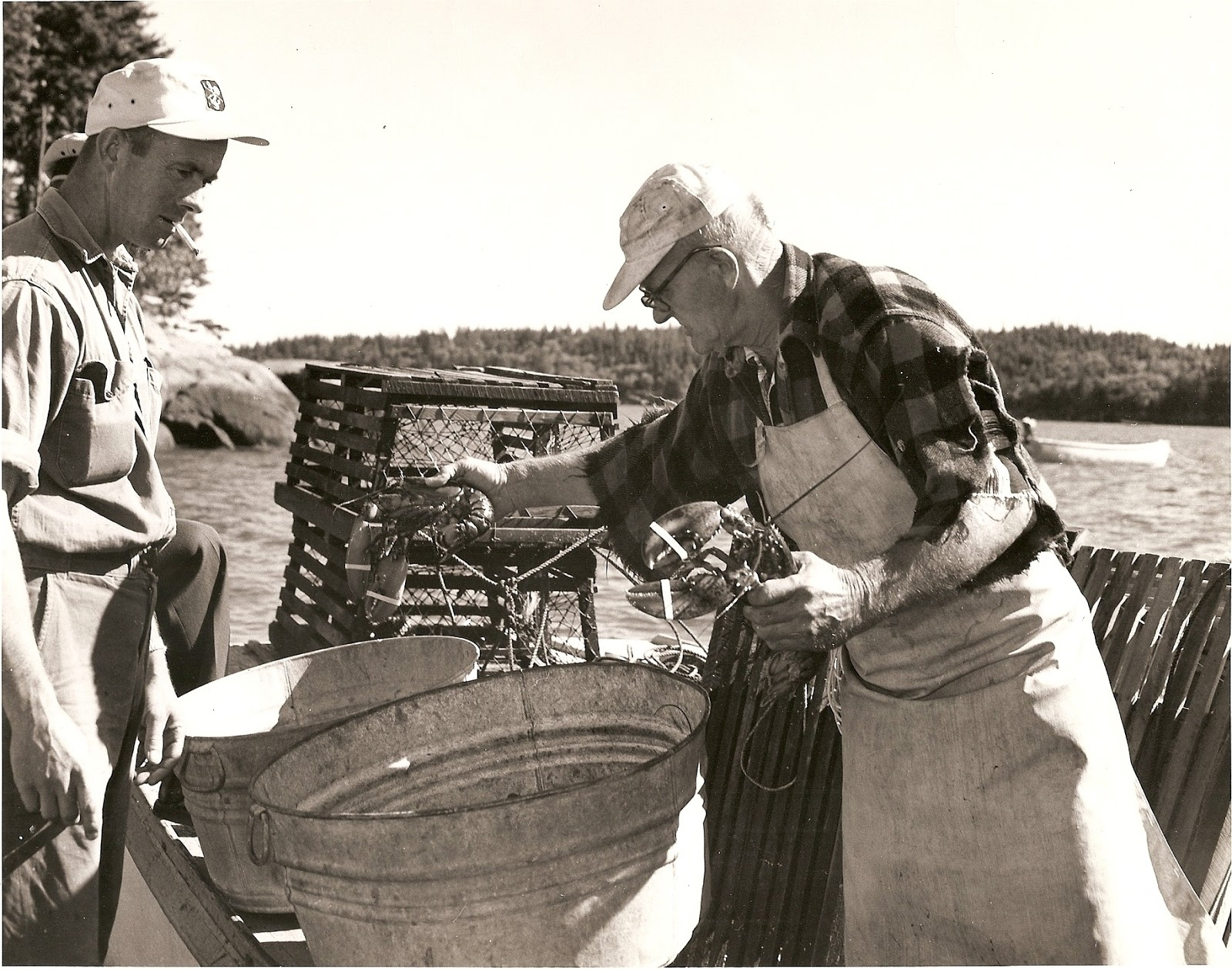 How to catch a lobster in down east maine about the book for Lobster fishing in maine