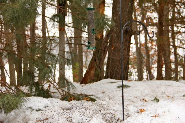 """22"""" gap from feeder bottom to snow bank"""