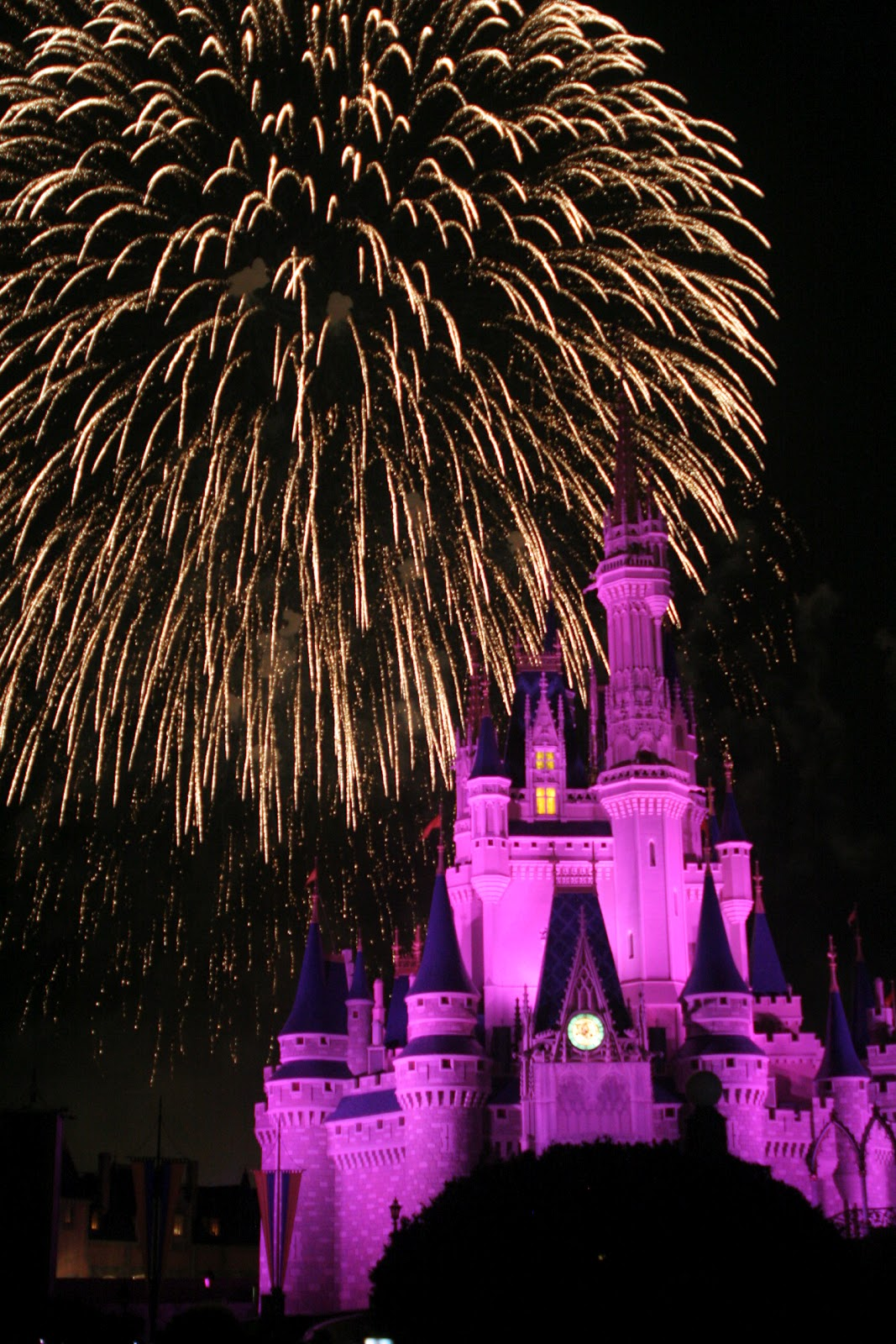 Magic Kingdom, fireworks