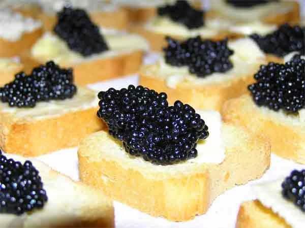 Caviar propiedades