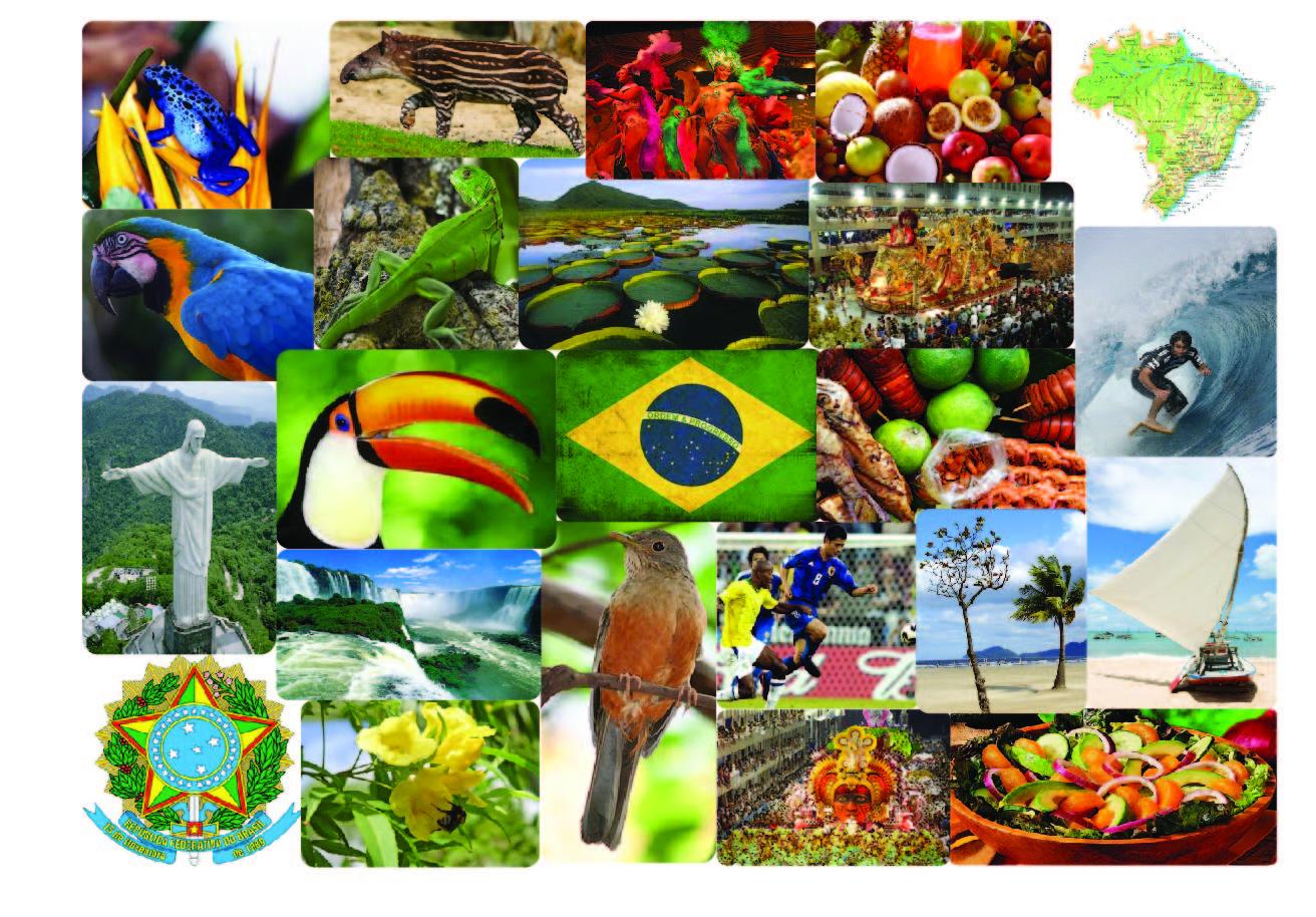 SkyHigh Group Work Blog: South American Moodboard