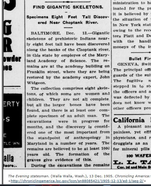 1905.12.13 - The Evening Statesman