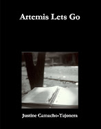 Artemis Lets Go Available on Lulu.com, the Apple iBookstore and Nook