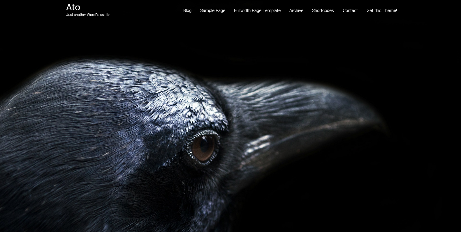 Ato WordPress Theme