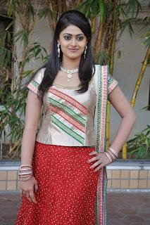 Actress Megha Sree Stills in Anaganaga Oka Chitram Launch Pictures 7.jpg