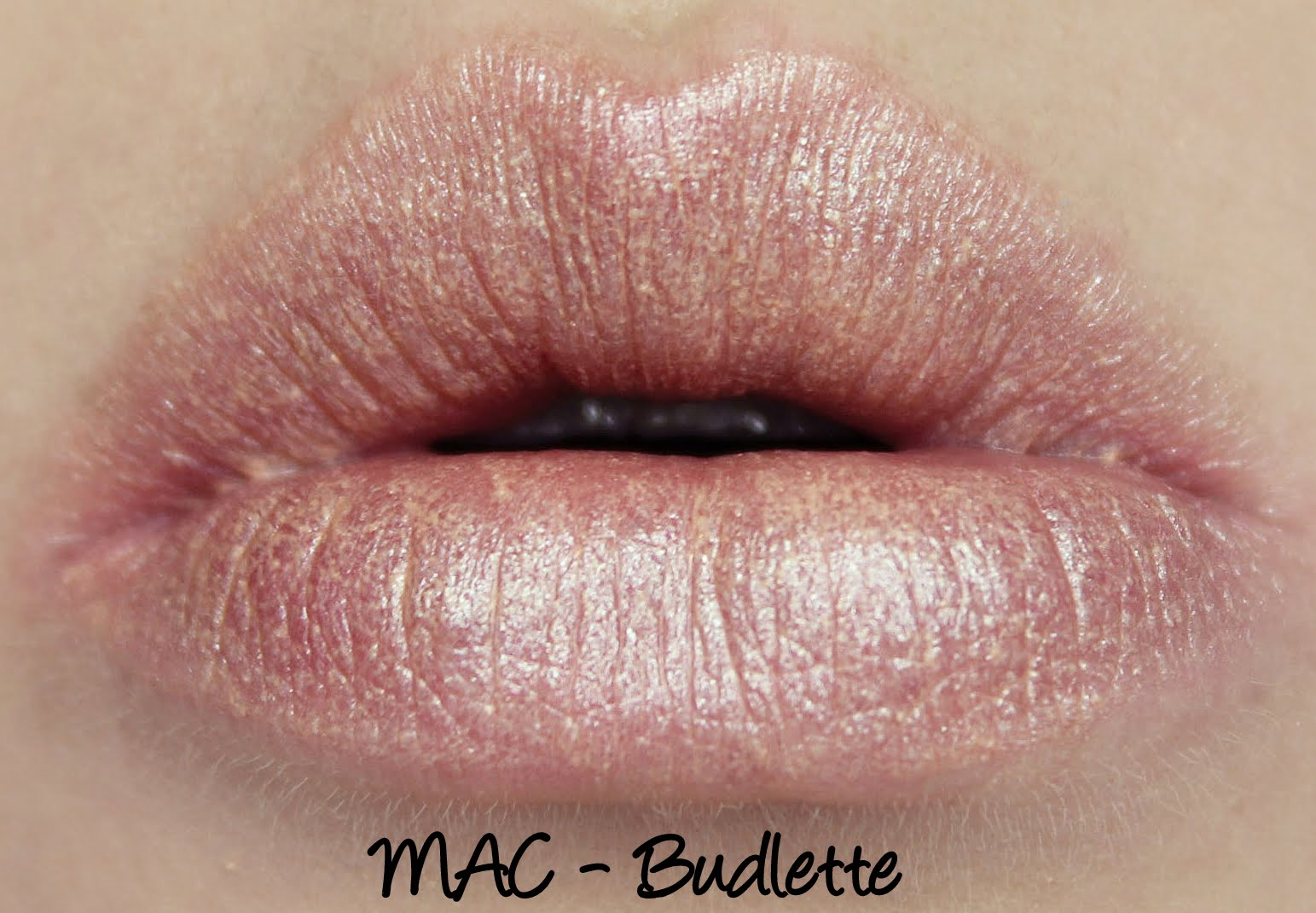 MAC Monday: Fab Florals - Budlette Lipstick Swatches and Review