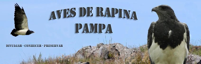 Aves de Rapina Pampa