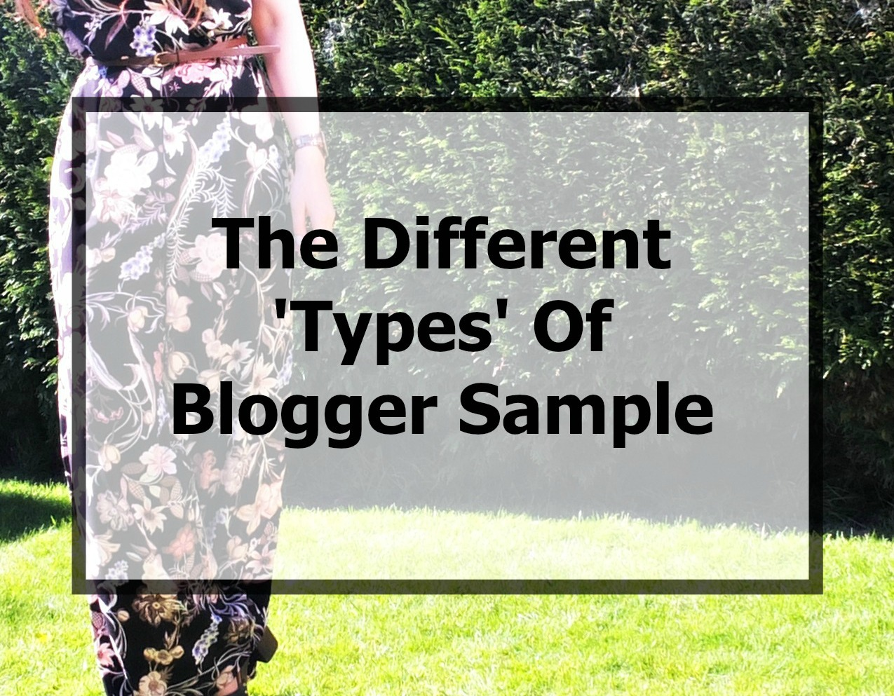 the different types of blogger sample explained
